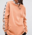 http://www.asos.fr/puma/puma-exclusivite-asos-large-sweat-a-capuche-avec-bande/prd/7298777?iid=7298777&clr=Cuivre&SearchQuery=puma%20shirt&pgesize=36&pge=0&totalstyles=43&gridsize=3&gridrow=9&gridcolumn=1